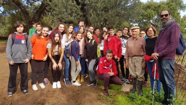 Excursión y senderismo por Aracena